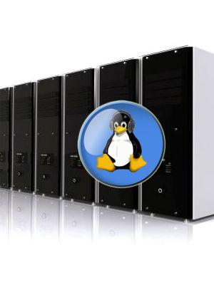 Plano Linux Profissional